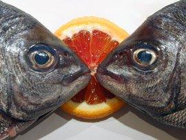 Dorades à l'Orange et au Fenouil