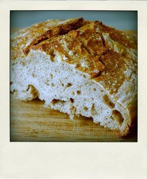 Starter bread
