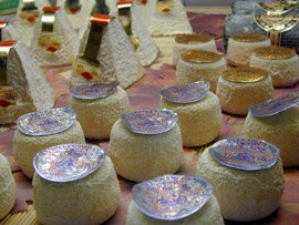 Notes from the Salon du Fromage