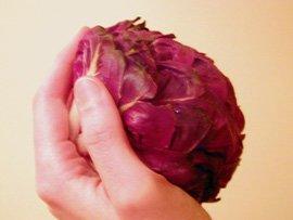 Petite Salade Rouge