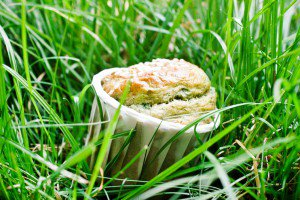 Muffin aux herbes fraîches