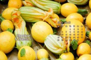 zucchini_small