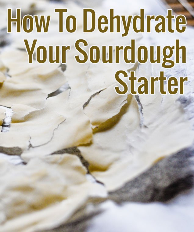 http://chocolateandzucchini.com/tips-tricks/dehydrating-your-sourdough-starter/