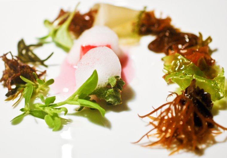 """""""The Sea"""", un parcours découverte d'algues mangé chez El Bulli."""