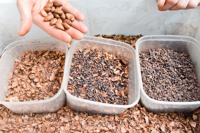 Les fèves de cacao (en haut) ; les envelopppes (à gauche) ; le grué de cacao (à droite).