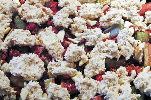 Raspberry Rhubarb Grunt