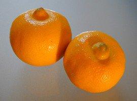 citron_bergamote