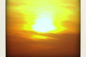 sun-pola