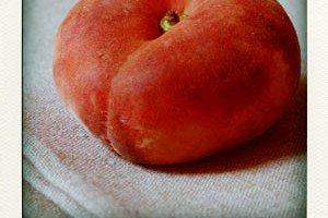 peach-pola