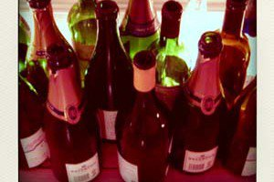bouteilles-pola
