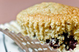 Blueberry Oat Bran Muffin