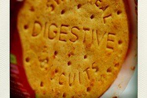digestive-pola
