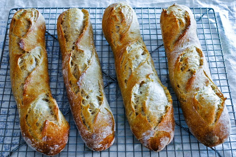 Sourdough Starter Baguettes Recipe