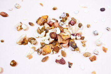 Sprouted Trail Mix: The Snack That Broke My Airplane Fast