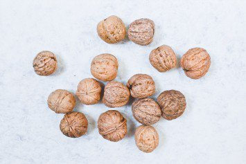 Périgord Walnuts