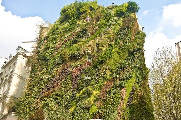 Vertical garden on rue d'Aboukir in Paris
