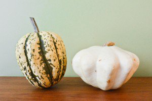 Sweet Dumpling Squash and Pattypan Squash.