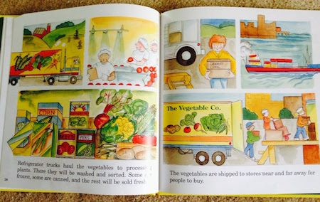 vegetables-we-eat
